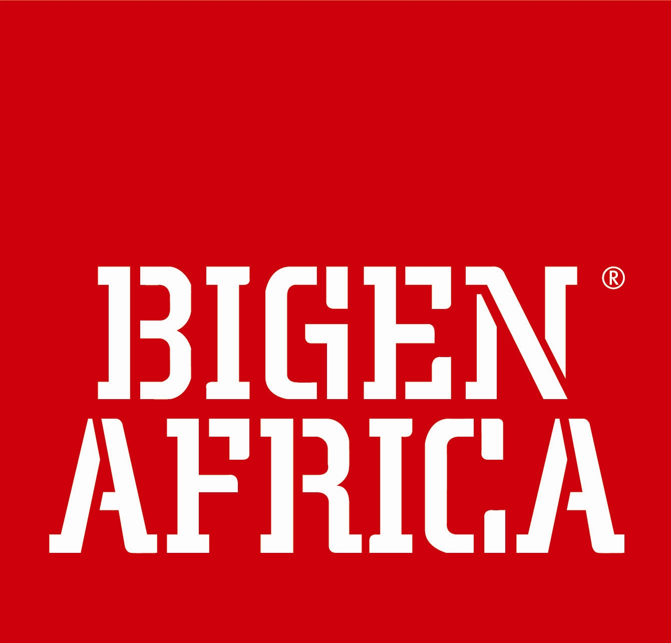 Bigen Africa Group Holdings (Pty) Ltd